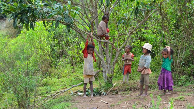 Construction d'une cantine scolaire à Madagascar – Oct. 2014